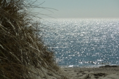 Strand bei Nieblum
